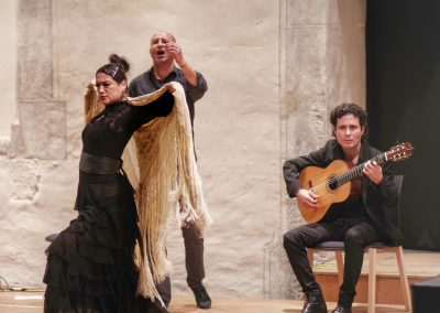 flamenco festival würzburg